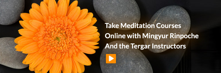 Online Meditation Classes with Mingyur Rinpoche