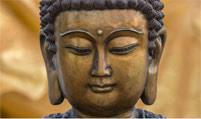 buddha-201×119