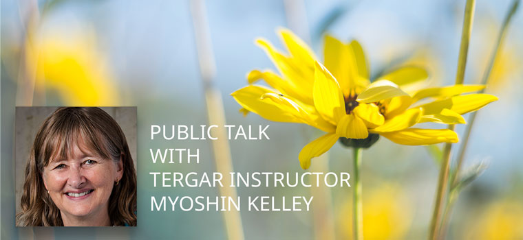 myoshin-kelley-public-talk-fb-201801
