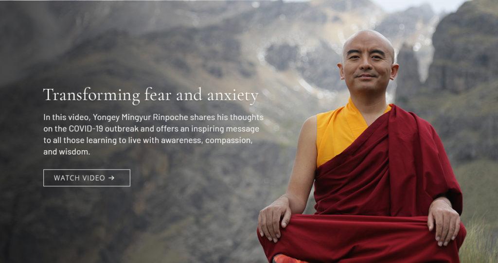 banner-rinpoche